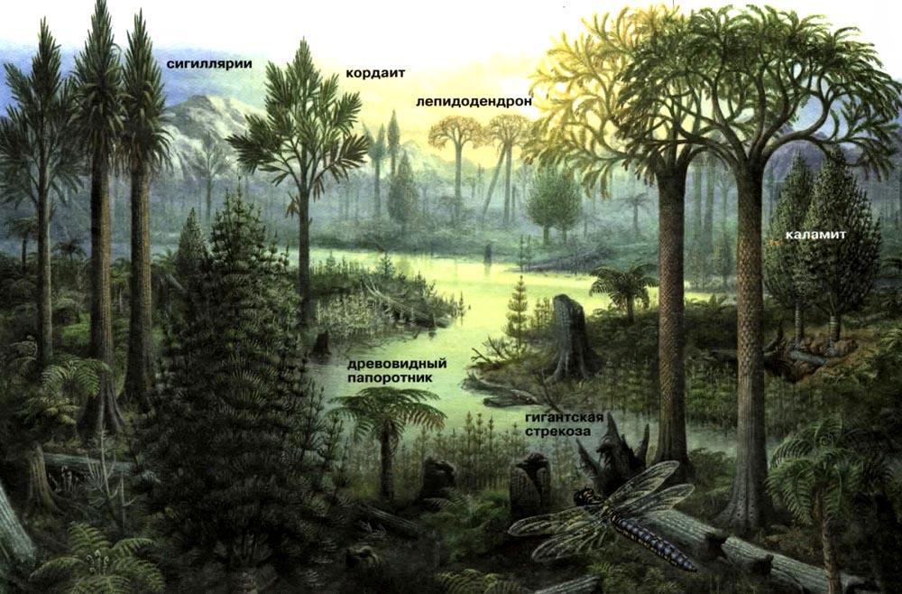 Гигантские каменноугольные леса