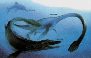 Три морских рептилии мелового периода