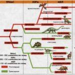 Классификация динозавров