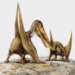 Птеродактиль кормит своего детеныша. Эти рептилии, полностью сложив крылья, могли довольно легко передвигаться по земле.