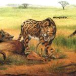 Цннодесмусы защищают свою добычу от нимравуса