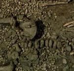 Это захоронение ребенка имеет возраст 30 000 пет. Оно было найдено в Италии.