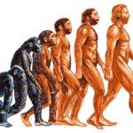 Продолжается ли эволюция и сегодня