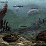 Первые животные