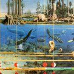 Карта эволюции