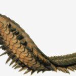 Артроплевра - гигантская многоножка (1,8 м в длину). Несмотря на свой устрашающий вид, она питалась растениями.