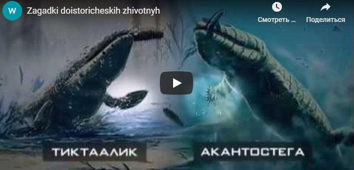 Загадки доисторических животных
